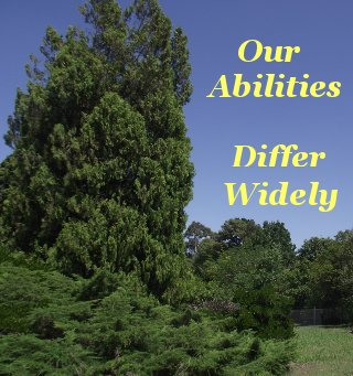 Our abilities differ widely