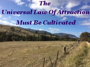 The universal law of attraction must be cultivated