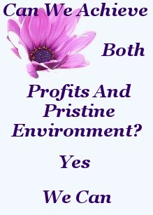 Can we achieve both profits and pristine environment? yes we can