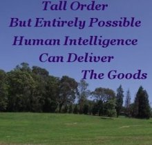 Tall order. But entirely possible. Human Intelligence can deliver the goods