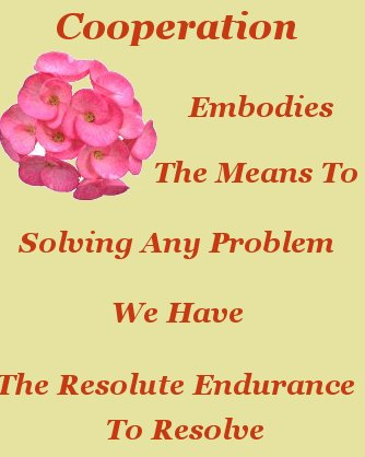 Cooperation embodies the means to solving any problem we have the resolute endurance to resolve