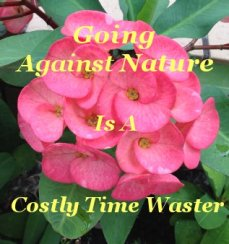 Going against nature is a costly time waster