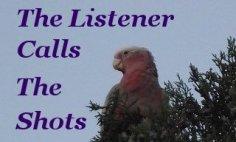 The listener calls the shots