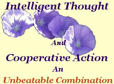 Intelligent thought and cooperative action. an unbeatable combination