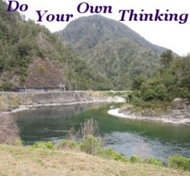 Do your own thinking