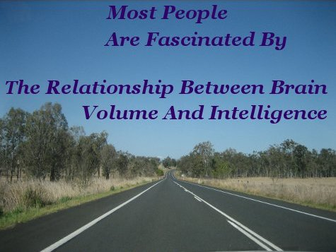 Most people are fascinated by the relationship between brain volume and intelligence