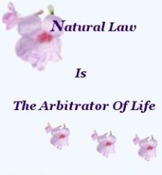 Natural Law is the arbitrator of life