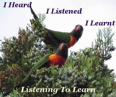 Listening to learn – I heard, I listened, I learnt