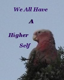 We all have a higher self