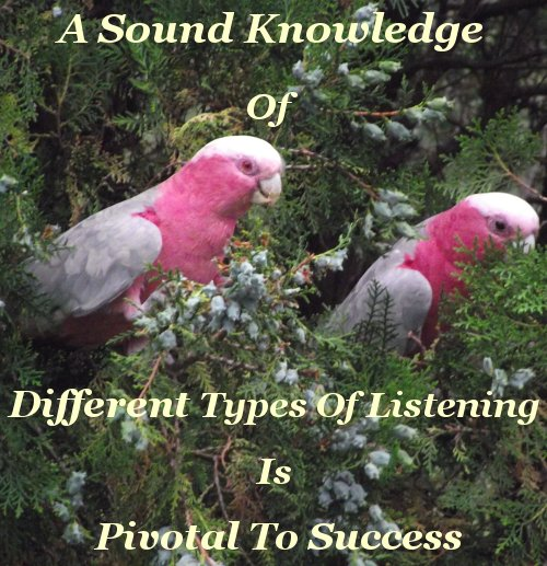 A sound knowledge of the different types of listening is pivotal to success