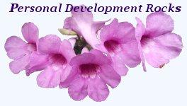 Personal Development Rocks