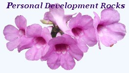 Personal Development Rocks