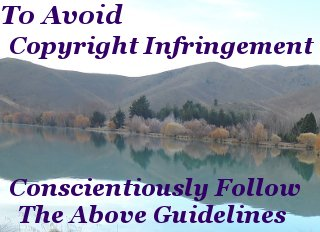 To avoid copyright infringement, conscientiously follow the above guidelines