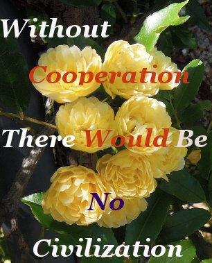 Without cooperation there would be no civilization