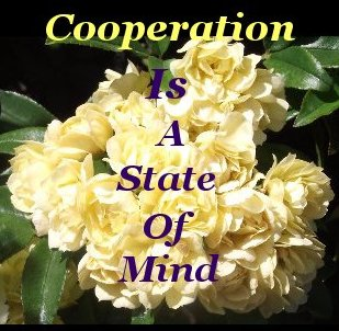 Cooperation is a state of mind