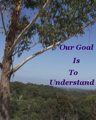 Our goal is to understand