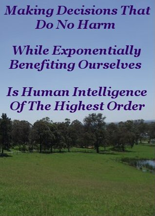 Making decisions that do no harm while exponentially benefiting ourselves is Human Intelligence of the highest order