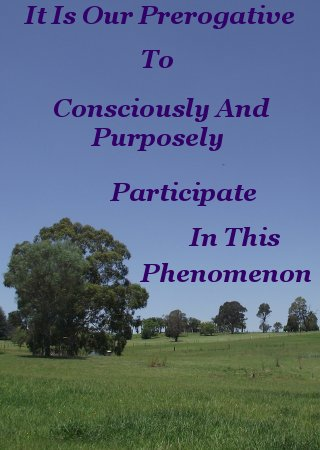 It is our prerogative to consciously and purposely participate in this phenomenon