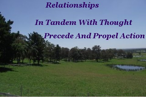 Relationships, in tandem with thought, precede and propel action