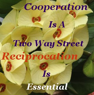 Cooperation is a two way street, reciprocation is essential