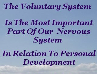 The voluntary system is the most important part of our nervous system in relation to personal development