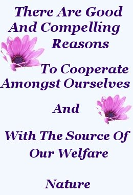 There are Good and compelling reasons to cooperate amongst ourselves, and with the source of our welfare - Nature