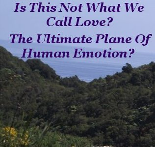 Is this not what we call love? the ultimate plane of human emotion?